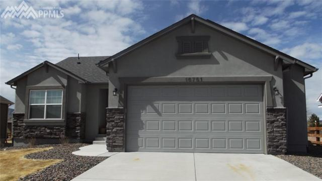 16761 Buffalo Valley Path, Monument, CO 80132 (#7857848) :: Action Team Realty