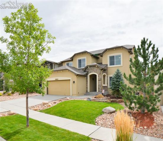5045 Galloping Goose Way, Colorado Springs, CO 80924 (#7858923) :: The Daniels Team