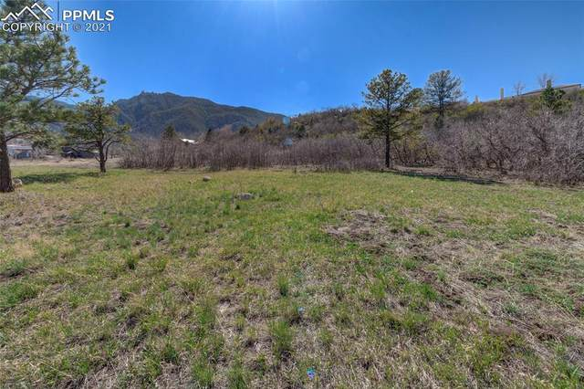 728 Overlook Ridge Point, Colorado Springs, CO 80906 (#7858960) :: The Daniels Team
