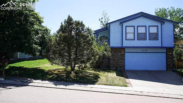 6376 Brightstar Drive, Colorado Springs, CO 80918 (#7863072) :: 8z Real Estate