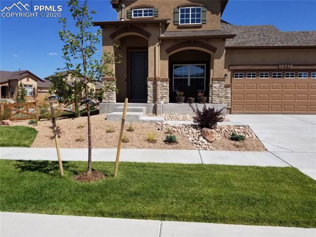 7327 Jagged Rock Circle, Colorado Springs, CO 80927 (#7863163) :: Tommy Daly Home Team
