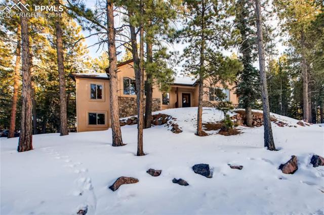 215 Wildrose Court, Woodland Park, CO 80863 (#7863530) :: 8z Real Estate
