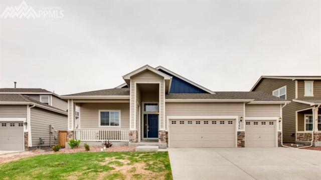 8396 Hardwood Circle, Colorado Springs, CO 80908 (#7864553) :: 8z Real Estate