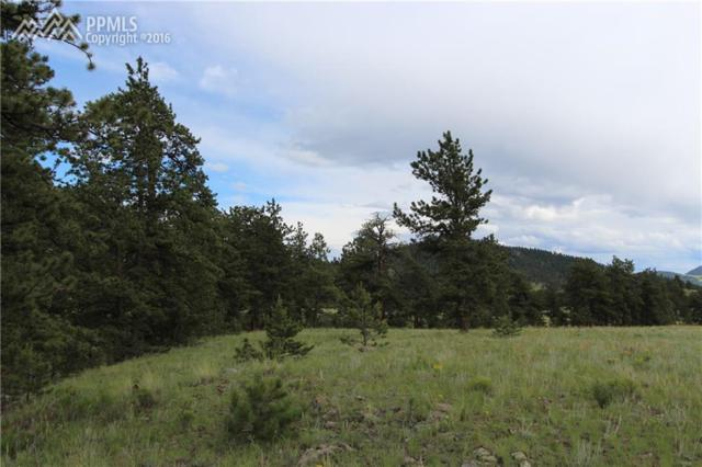 00 Elk Mountain Road, Guffey, CO 80820 (#7867441) :: 8z Real Estate