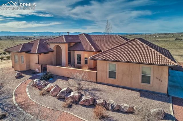 1439 N Buffalo Drive, Pueblo West, CO 81007 (#7871239) :: The Kibler Group