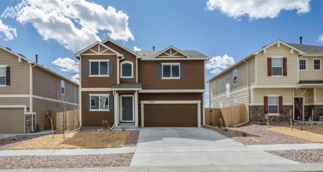 7283 Thorn Brush Way, Colorado Springs, CO 80923 (#7874594) :: Action Team Realty