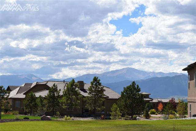 13585 Random Ridge View, Colorado Springs, CO 80921 (#7880018) :: The Hunstiger Team