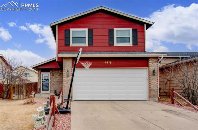 4475 Witches Hollow Lane, Colorado Springs, CO 80911 (#7891787) :: 8z Real Estate