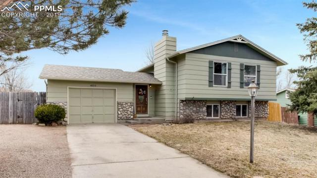 4010 Sandberg Drive, Colorado Springs, CO 80911 (#7892038) :: Relevate Homes | Colorado Springs