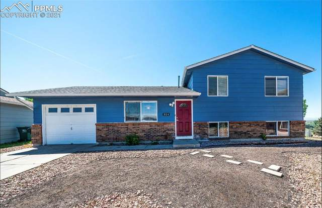 324 Maram Way, Fountain, CO 80817 (#7893813) :: Tommy Daly Home Team