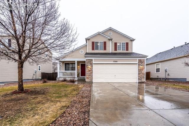 7266 Brush Hollow Drive, Fountain, CO 80817 (#7895559) :: Action Team Realty