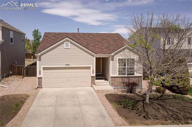 7296 Brush Hollow Drive, Fountain, CO 80817 (#7896665) :: Tommy Daly Home Team