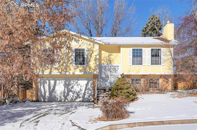 4735 W Old Farm Circle, Colorado Springs, CO 80917 (#7896811) :: HomeSmart