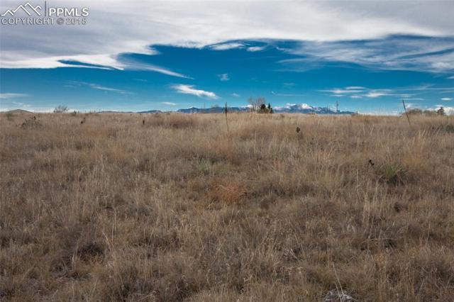 17130 Eaglenest Drive, Colorado Springs, CO 80930 (#7897426) :: 8z Real Estate