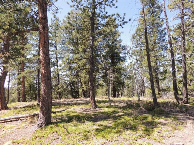 188 Pike View Drive, Divide, CO 80814 (#7901868) :: 8z Real Estate