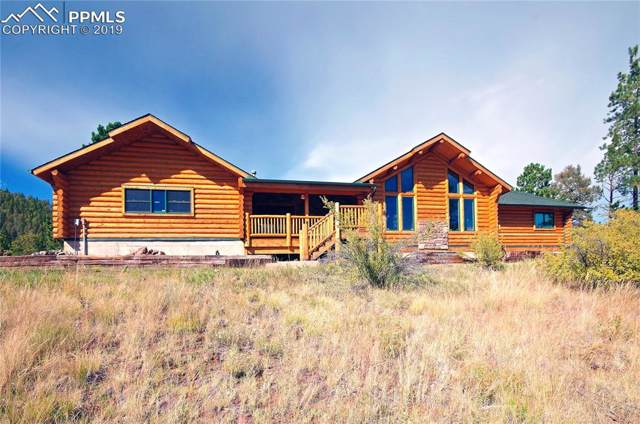 3025 Teller 1 Road, Cripple Creek, CO 80813 (#7904240) :: CC Signature Group