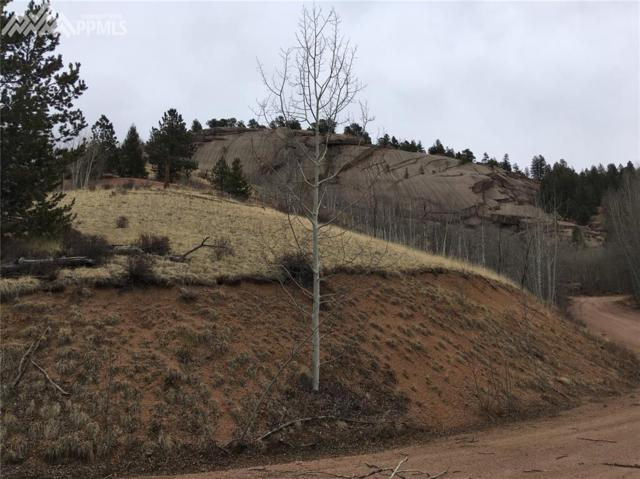 550 Buckhorn Road, Cripple Creek, CO 80813 (#7904865) :: Jason Daniels & Associates at RE/MAX Millennium