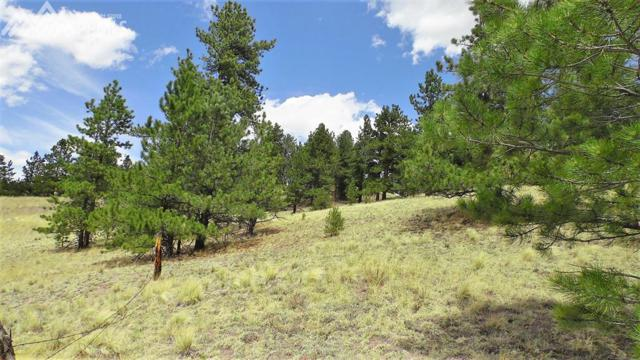 60 B Road, Guffey, CO 80820 (#7905836) :: The Hunstiger Team