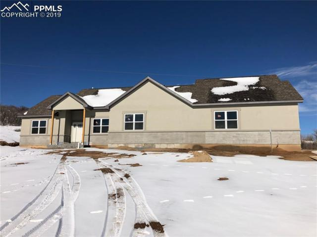 2822 Waterfront Drive, Monument, CO 80132 (#7908180) :: The Daniels Team