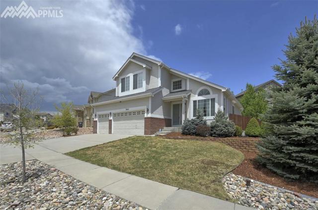 7665 Fargo Drive, Colorado Springs, CO 80920 (#7915269) :: Jason Daniels & Associates at RE/MAX Millennium