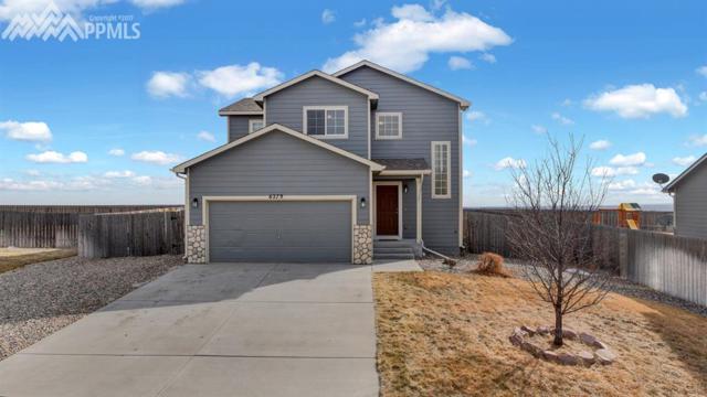 6279 Passing Sky Drive, Colorado Springs, CO 80911 (#7918245) :: 8z Real Estate