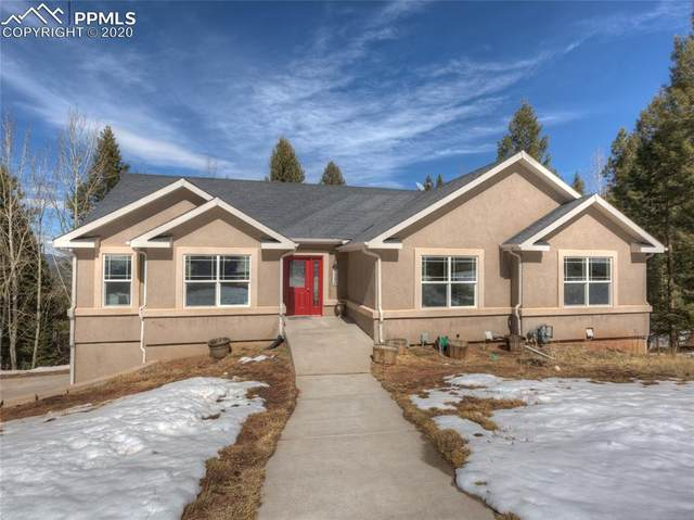 1390 Crestview Way, Woodland Park, CO 80863 (#7919758) :: Finch & Gable Real Estate Co.