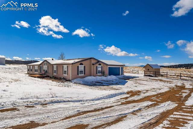 569 Golden Grain Lane, Divide, CO 80814 (#7920150) :: 8z Real Estate