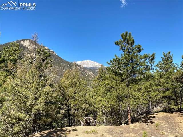 339 Eagle Mountain Road, Manitou Springs, CO 80829 (#7920557) :: 8z Real Estate