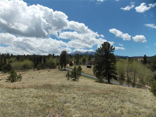 225 Rutgers Place, Woodland Park, CO 80863 (#7922775) :: Action Team Realty