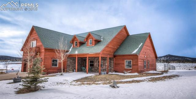 11393 S Highway 67 Highway, Cripple Creek, CO 80813 (#7922798) :: Jason Daniels & Associates at RE/MAX Millennium