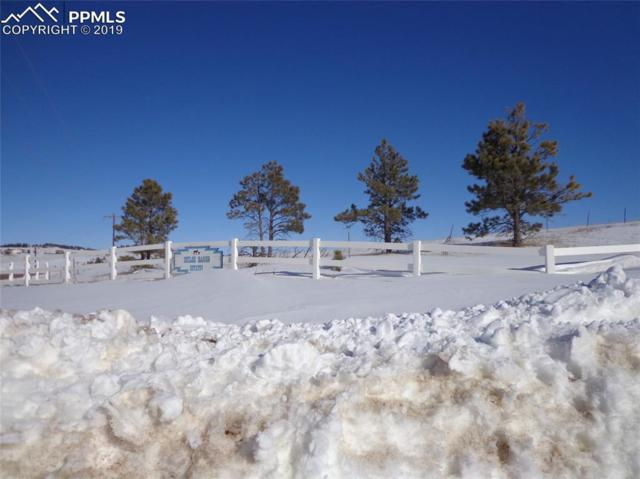 7445 Meadowpine Drive, Colorado Springs, CO 80908 (#7922827) :: 8z Real Estate