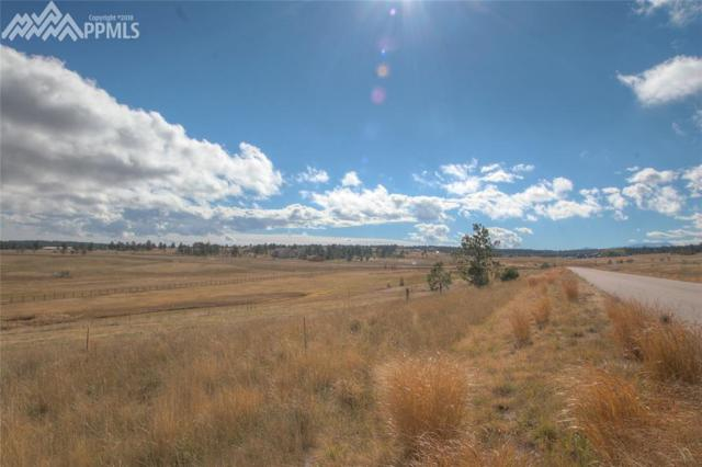 18661 Cherry Springs Ranch Drive, Monument, CO 80132 (#7925305) :: 8z Real Estate
