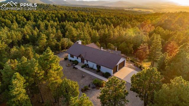 229 Meadow Spur Road, Walsenburg, CO 81089 (#7934889) :: 8z Real Estate