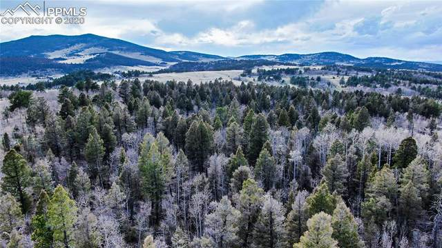 70 Doe View, Lake George, CO 80827 (#7934999) :: Re/Max Structure