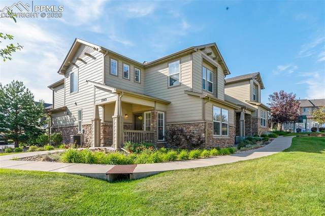 17043 Blue Mist Grove, Monument, CO 80132 (#7936236) :: Tommy Daly Home Team