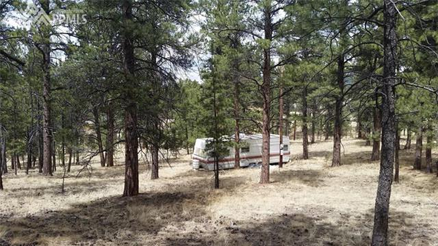 41 and 73 Ingels Drive, Florissant, CO 80816 (#7938344) :: 8z Real Estate