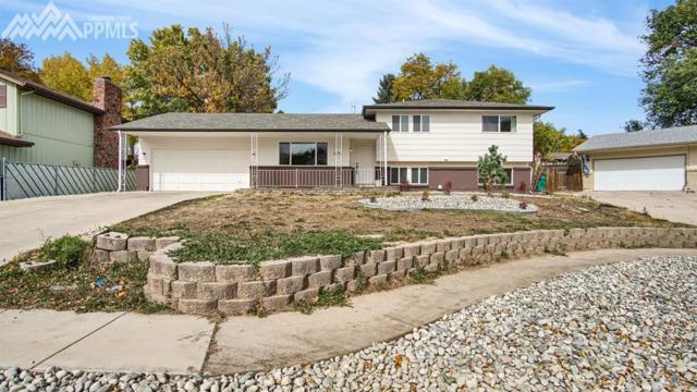 1434 Osgood Road, Colorado Springs, CO 80915 (#7938822) :: 8z Real Estate