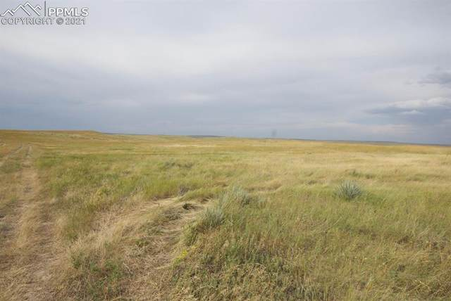 29895 Fred View, Yoder, CO 80864 (#7940360) :: Action Team Realty