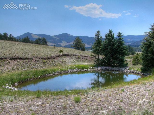 601 Old Kathleen Trail, Guffey, CO 80820 (#7941895) :: 8z Real Estate