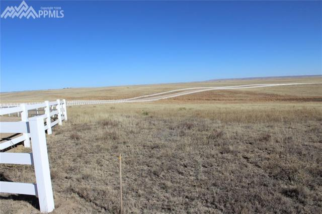 18791 Good Life View, Calhan, CO 80808 (#7943755) :: The Dunfee Group - Keller Williams Partners Realty