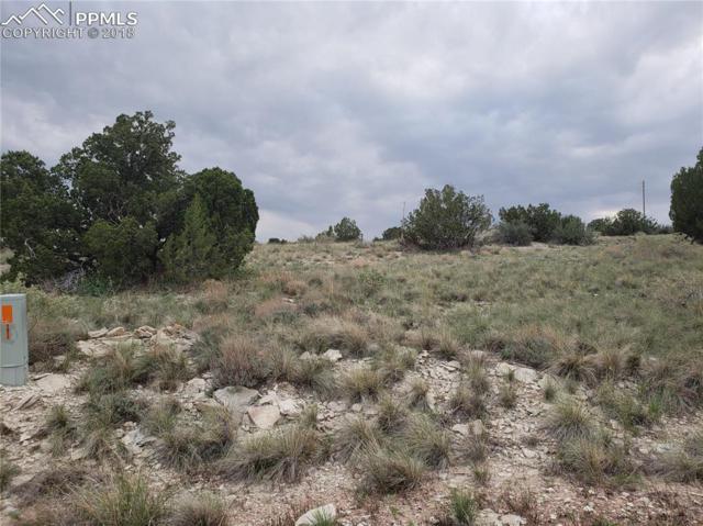 1677 N Bonita Drive, Pueblo West, CO 81007 (#7946913) :: The Treasure Davis Team