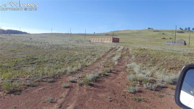 1612 County 1 Road, Cripple Creek, CO 80813 (#7947042) :: The Kibler Group