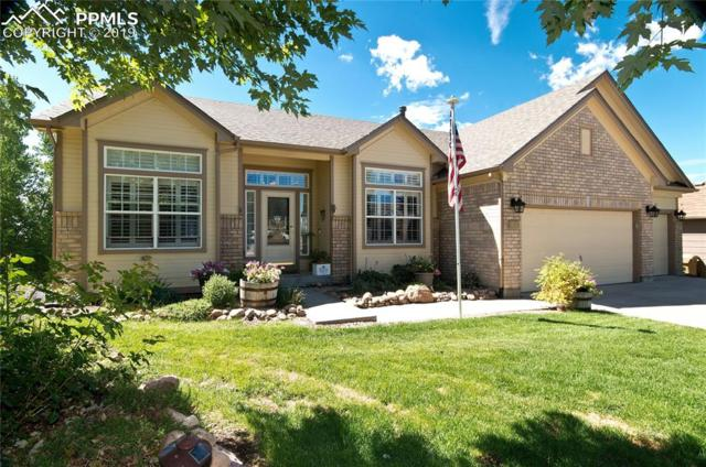 84 Pistol Creek Drive, Monument, CO 80132 (#7948913) :: The Treasure Davis Team