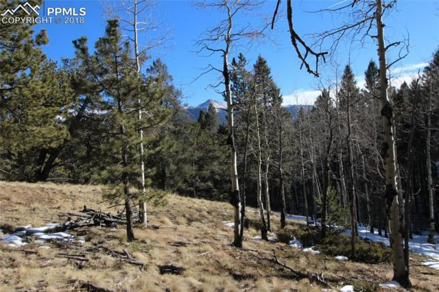 51 Mica Road, Divide, CO 80814 (#7948922) :: 8z Real Estate
