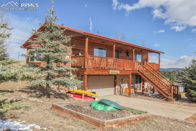 95 Stanford Place, Woodland Park, CO 80863 (#7950056) :: The Peak Properties Group