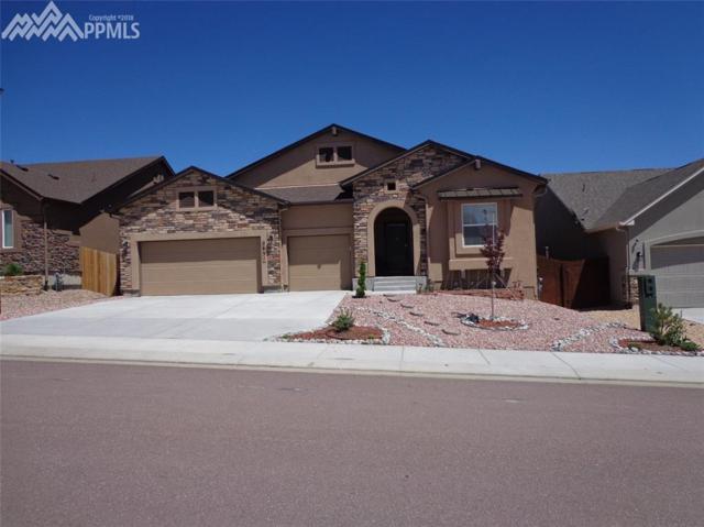 2631 Farrier Court, Colorado Springs, CO 80922 (#7950220) :: 8z Real Estate