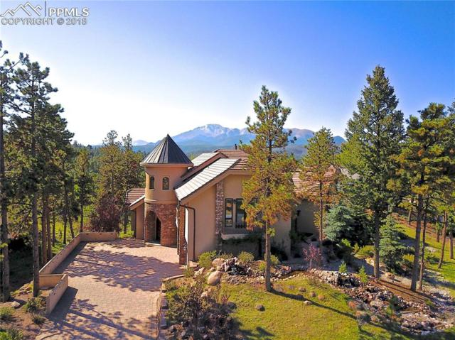201 Eagles Perch Place, Woodland Park, CO 80863 (#7952877) :: The Treasure Davis Team