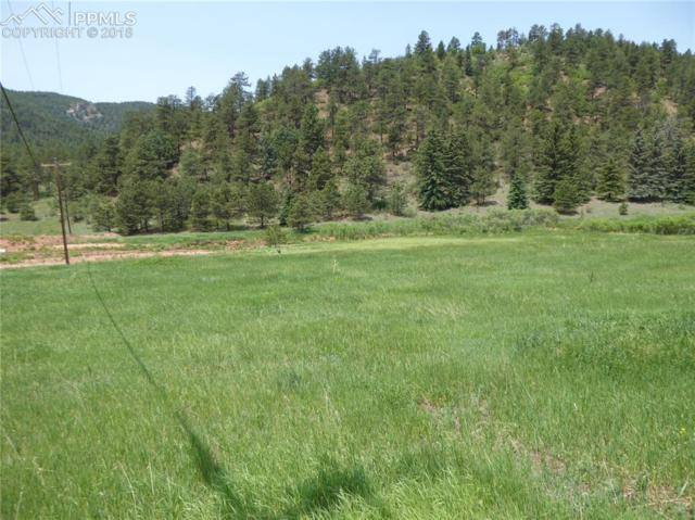 TBD County 21 Road, Woodland Park, CO 80863 (#7953738) :: Jason Daniels & Associates at RE/MAX Millennium
