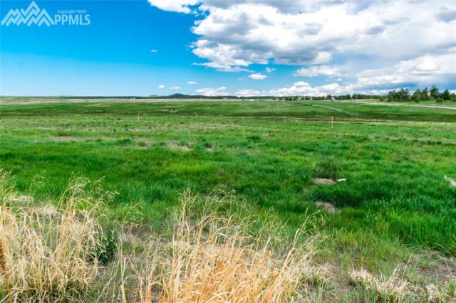 18511 Cherry Springs Ranch Drive, Monument, CO 80132 (#7955988) :: 8z Real Estate