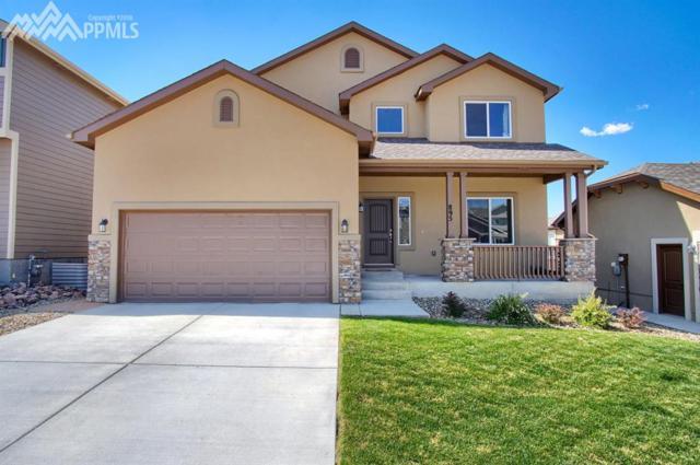 895 Pistol River Way, Colorado Springs, CO 80921 (#7956757) :: 8z Real Estate